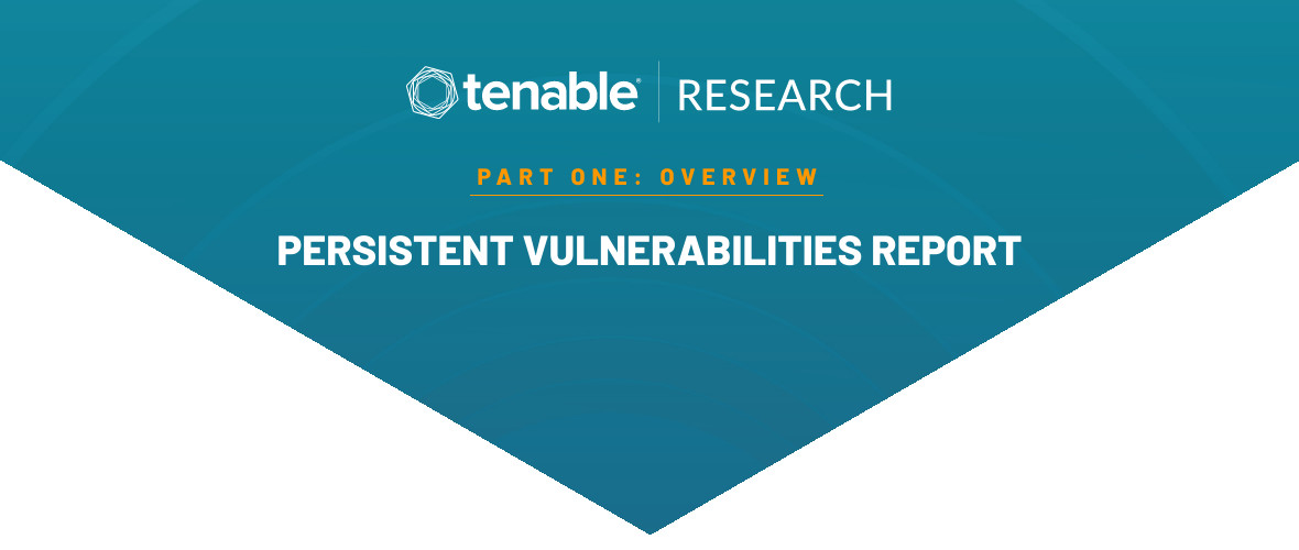 A Look at What Makes a Vulnerability Survive in the Remediation Race