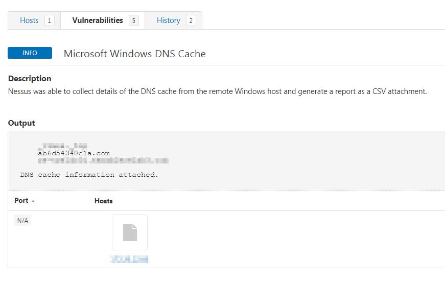 Tenable. io DNS findings