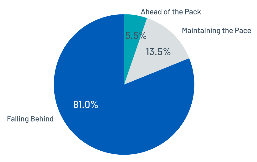 Figure 5 - Distribution of remediation pace across organizations