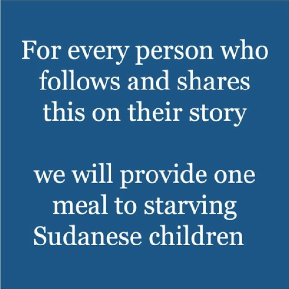 Instagram Sudan Meal Project scam