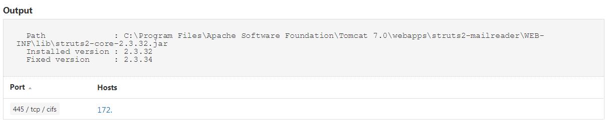 Apache Struts Windows output