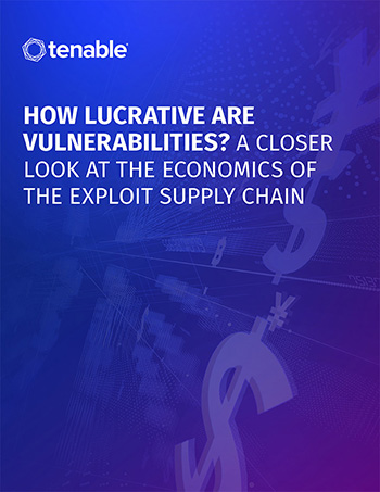 The Economics of Vulnerabilities and Exploit Supply Chains
