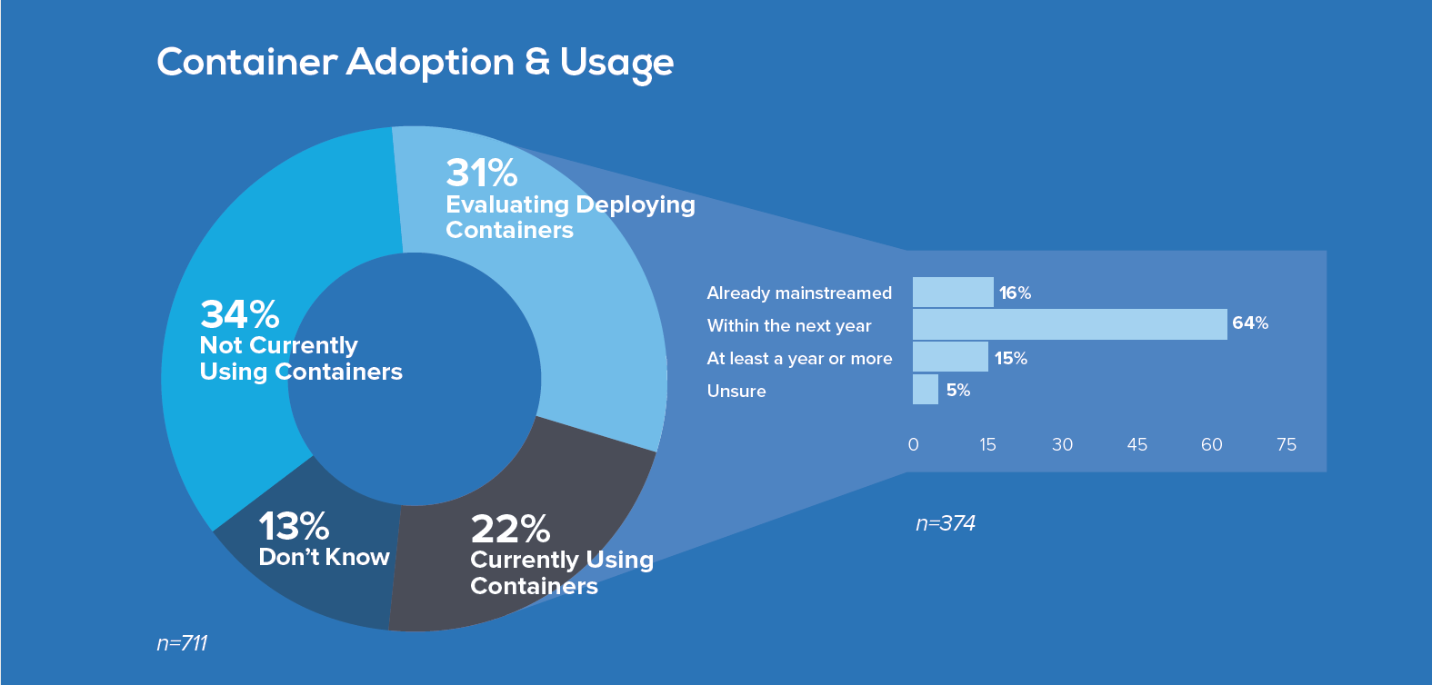 Container Adoption & Usage