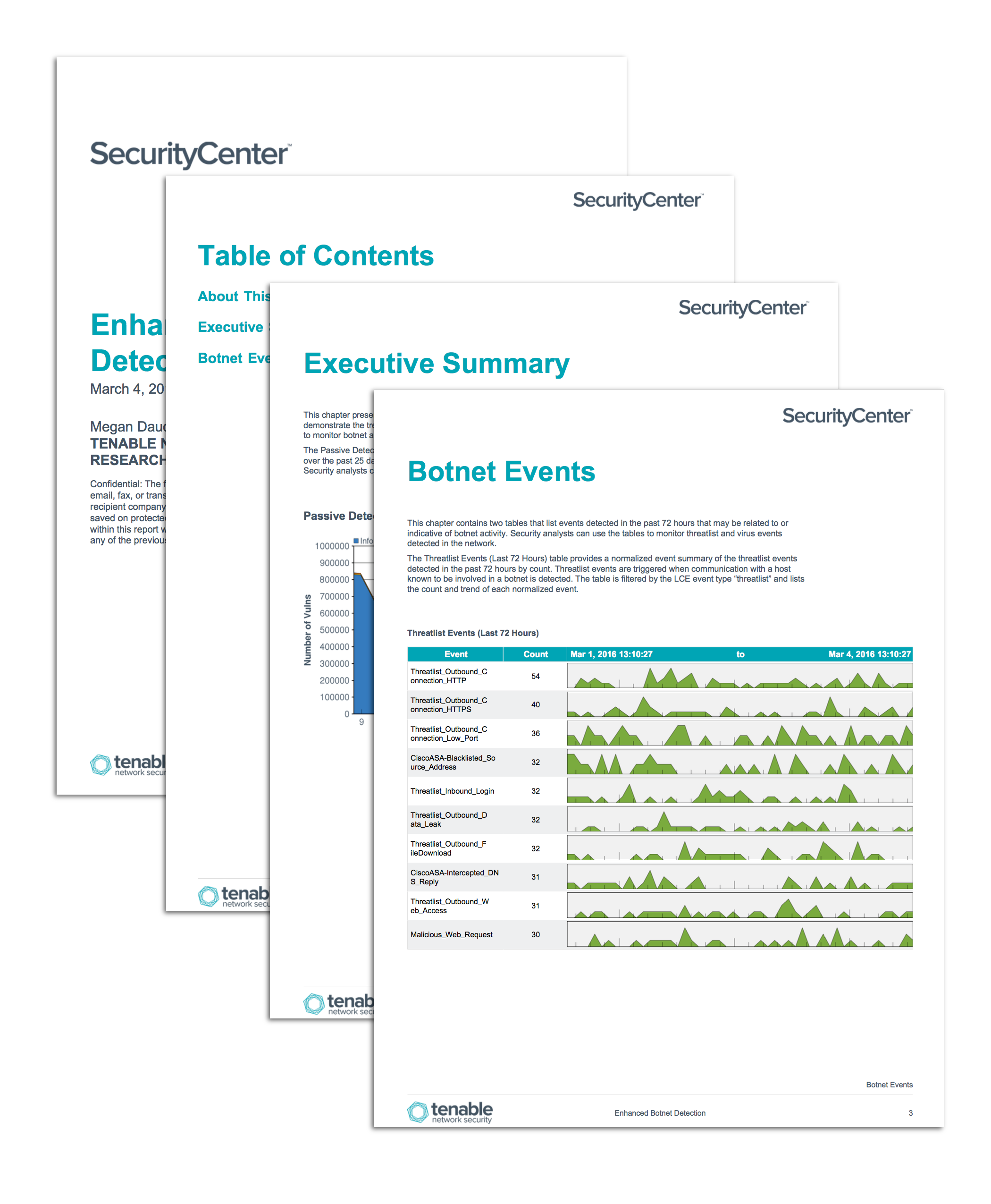 Enhanced Botnet Detection Report Screenshot