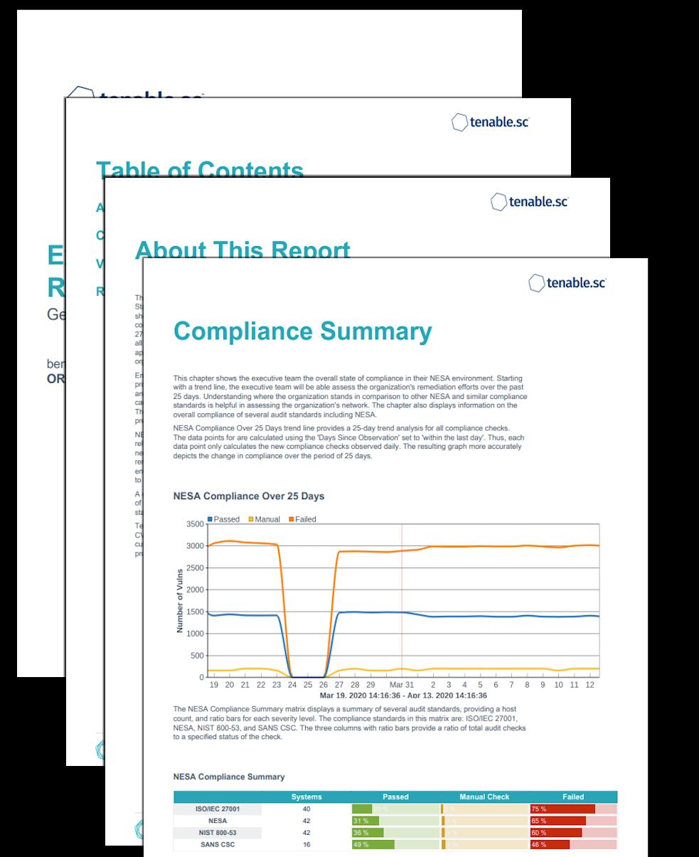 Executive NESA Summary Report