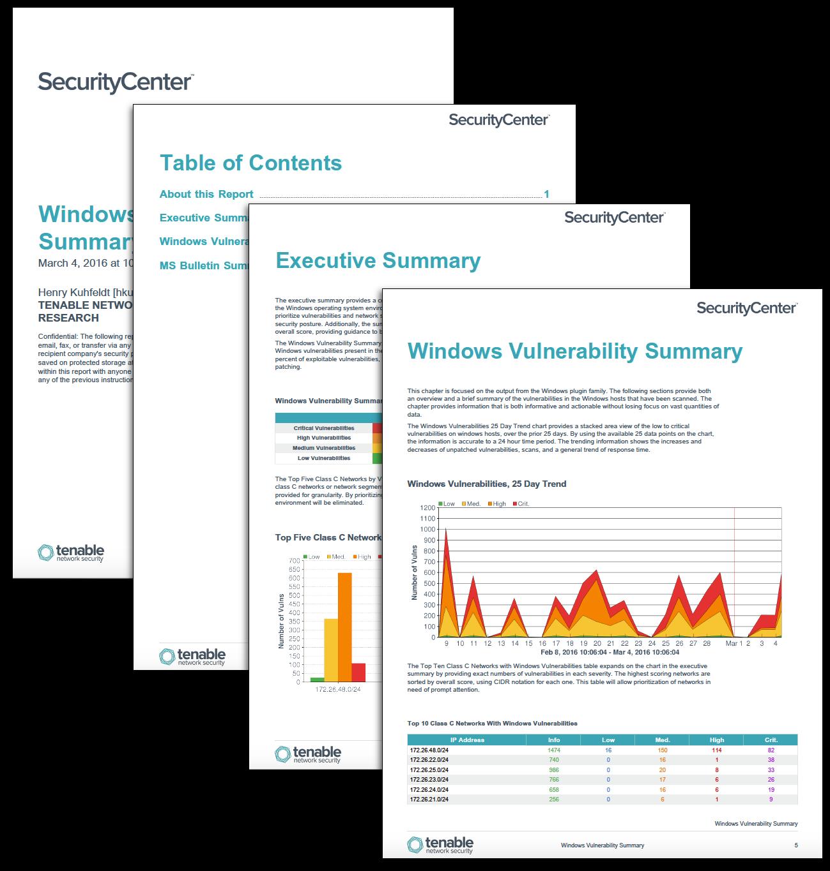Windows Vulnerability Summary Report