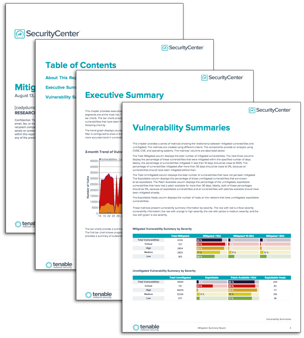Mitigation Summary Report