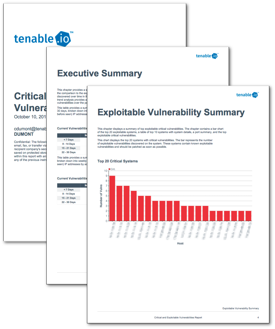 Critical and Exploitable Vulnerabilities Report