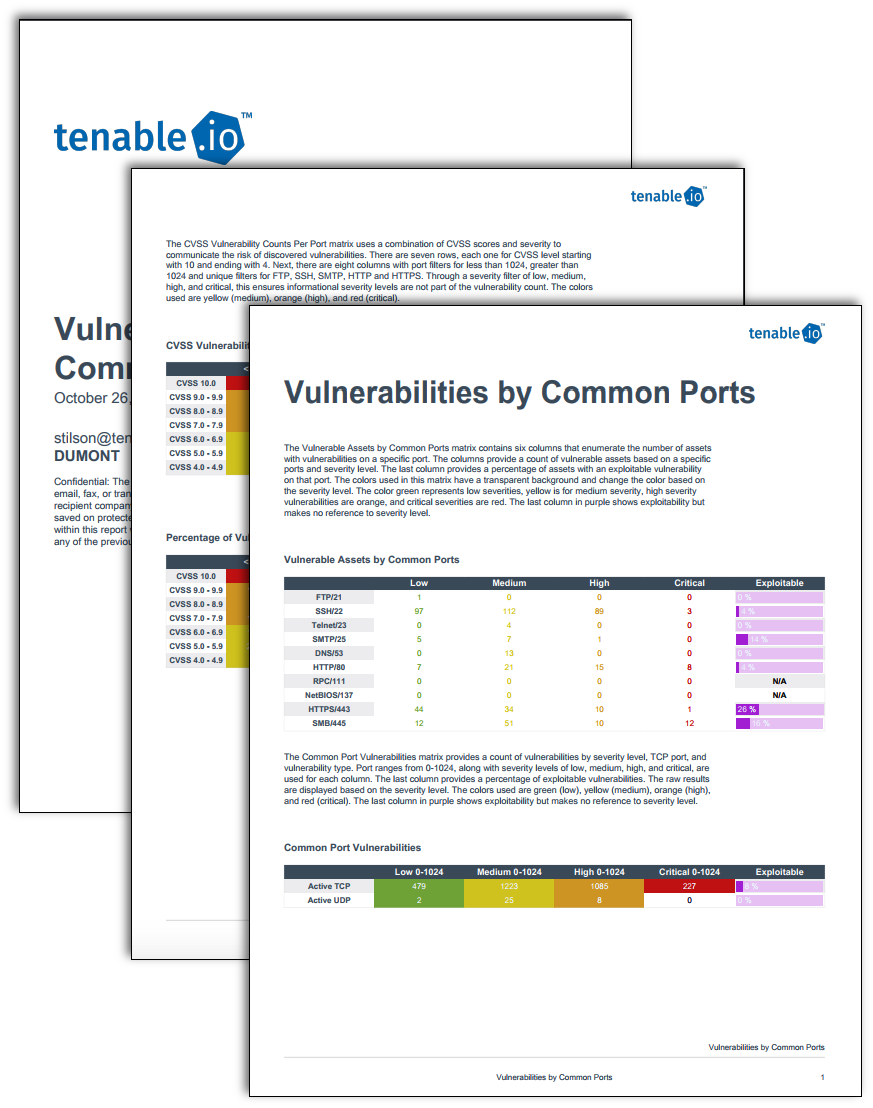 Vulnerabilities by Common Ports report