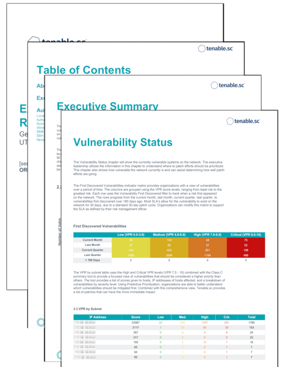 Executive VPR Summary Report Screenshot