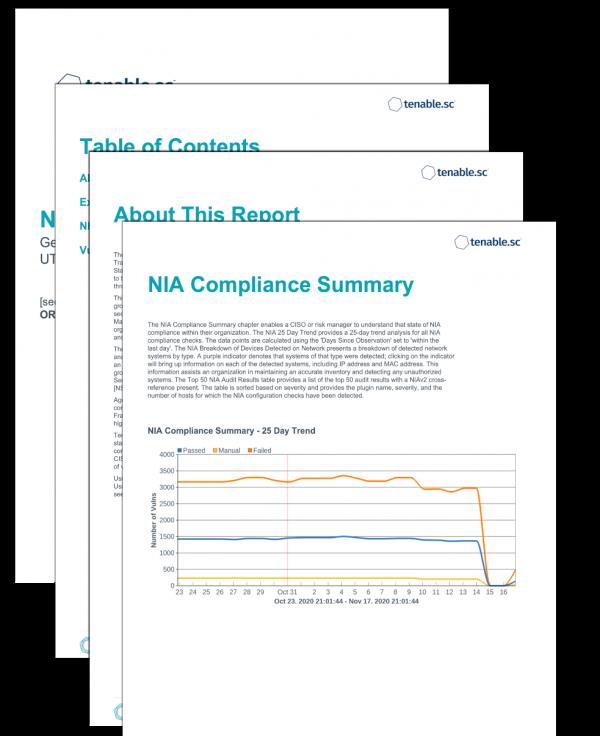 NIA Executive Summary Report Screenshot