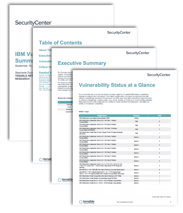IBM Vulnerability Summary Report Screenshot